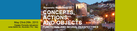 Concepts, Actions and Objects: Functional and Neural Perspectives (CAOs)