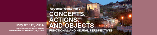 Concepts, Actions and Objects: Functional and Neural Perspectives