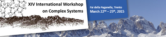 International Workshop on Complex Systems