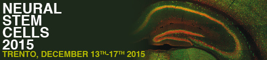 Neural Stem Cells 2015
