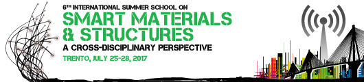 6th International Summer School on Smart Materials & Structures - A cross-disciplinary perspective