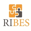 RIBES – Researches and Instruments on Business Ethics and Social and Environmental Accounting