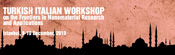 Turkish Italian Workshop on the Frontiers in Nanomaterial Research and Applications