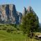 Siusi allo Sciliar, Alpe di Siusi Mountains, Alto-Adige
