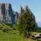Siusi allo Sciliar, Alpe di Siusi, Alto-Adige